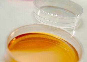 Gabinet Podologiczno Kosmetyczny  - pobranie materiału mykologicznego + badanie
