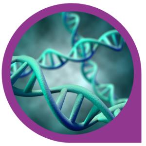Centrum Medycyny Ekologicznej - DNA Print 45