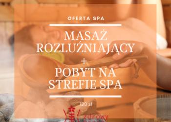 Zdrowy Masaż hotel Falko - masaż rozluźniający + pobyt w spa