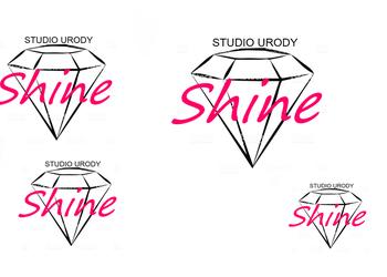 Studio Urody Shine