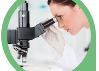 Centrum Medycyny Ekologicznej - mikroskopowe badanie żywej kropli krwi - 1 osoba dorosła - pierwsza wizyta z konsultacją naturoterapeutyczną
