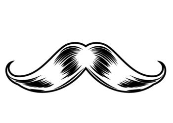 Bushman Barber - combo