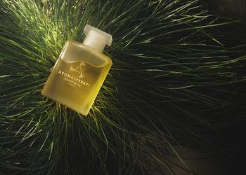 M-SPA w Młyn Jacka Hotel & Spa **** - masaż leśna terapia (czas trwania 60min. )