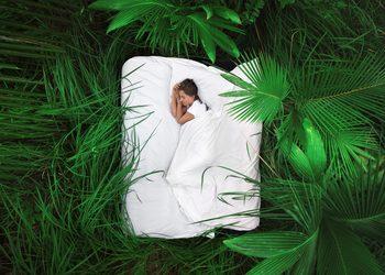 M-SPA w Młyn Jacka Hotel & Spa **** - masaż głęboki sen
